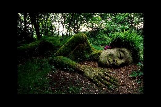 Creative-Garden-Design