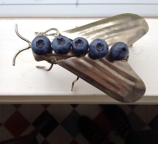 mustikkakärpänen