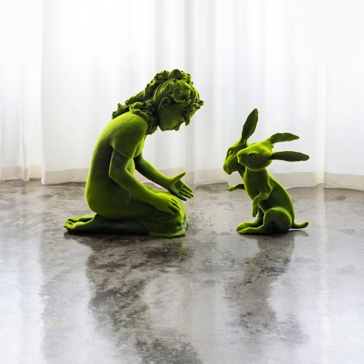 kim_rabbitt